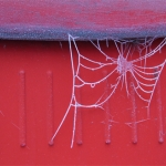 web-st-annes-frost-post-box