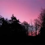 web-sunrise-scotland