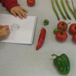 drawing-vegetables